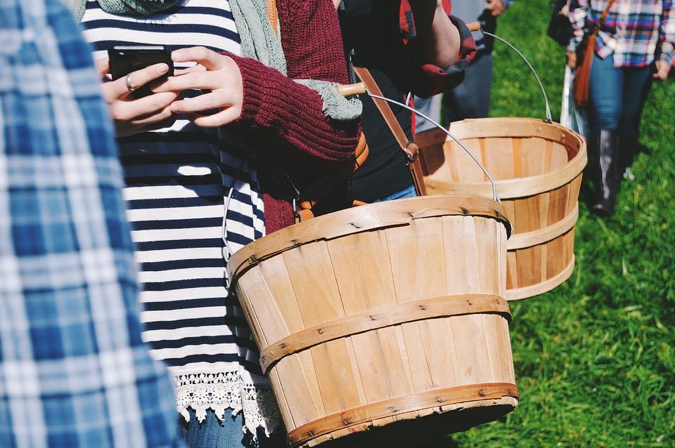basket-1246553_960_720