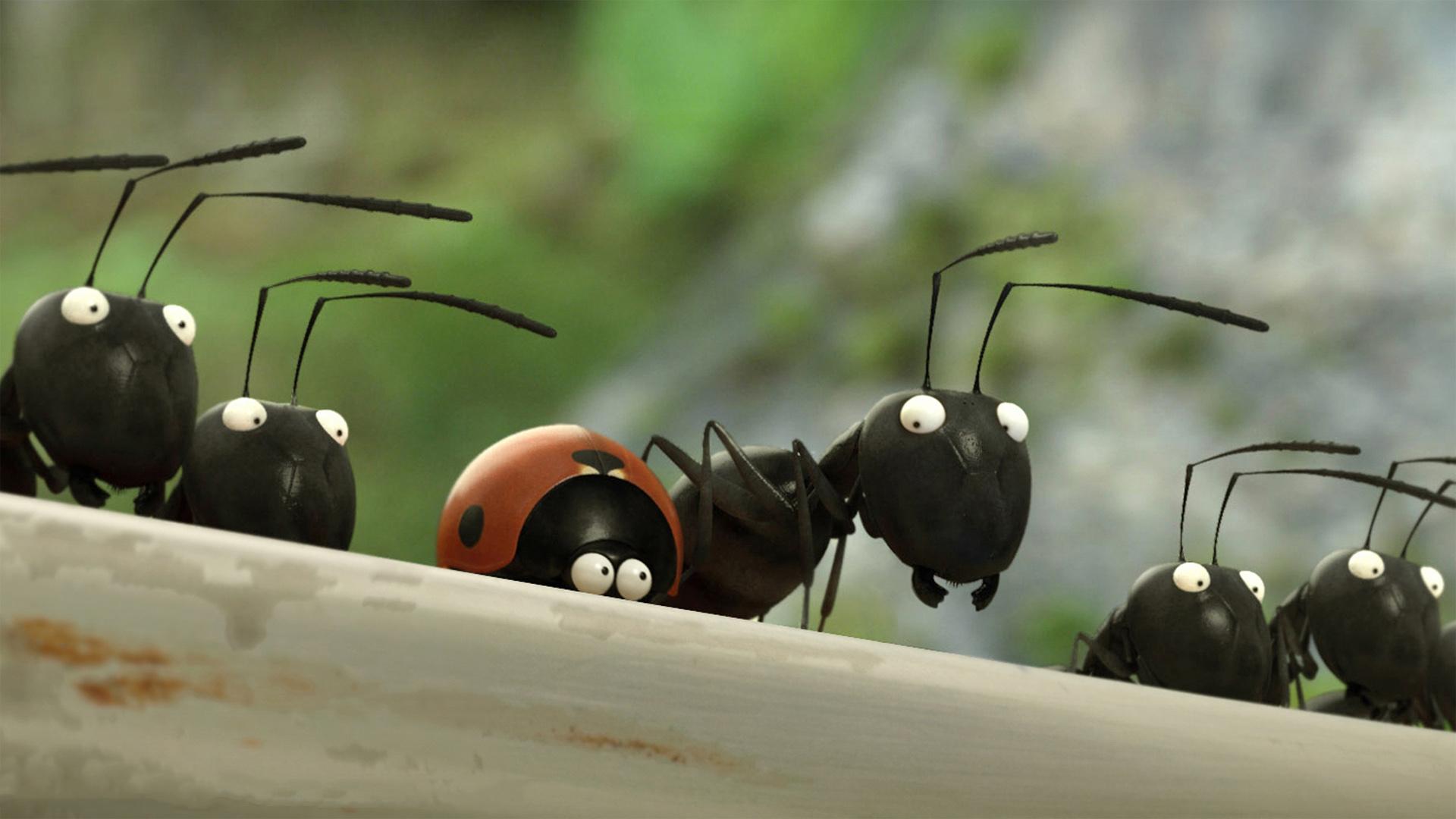 5 Películas De Dibujos Animados Sobre El Cuidado Del Medio Ambiente